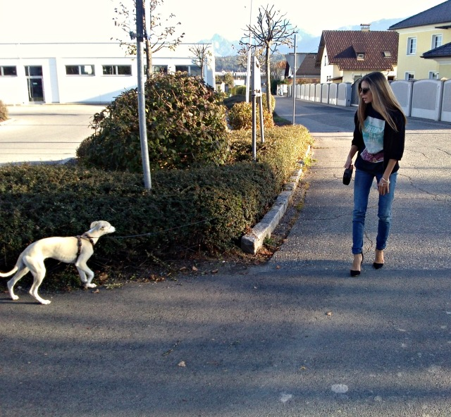dog walking in high heels